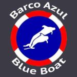 tenerife certified blue boat whale watching tour